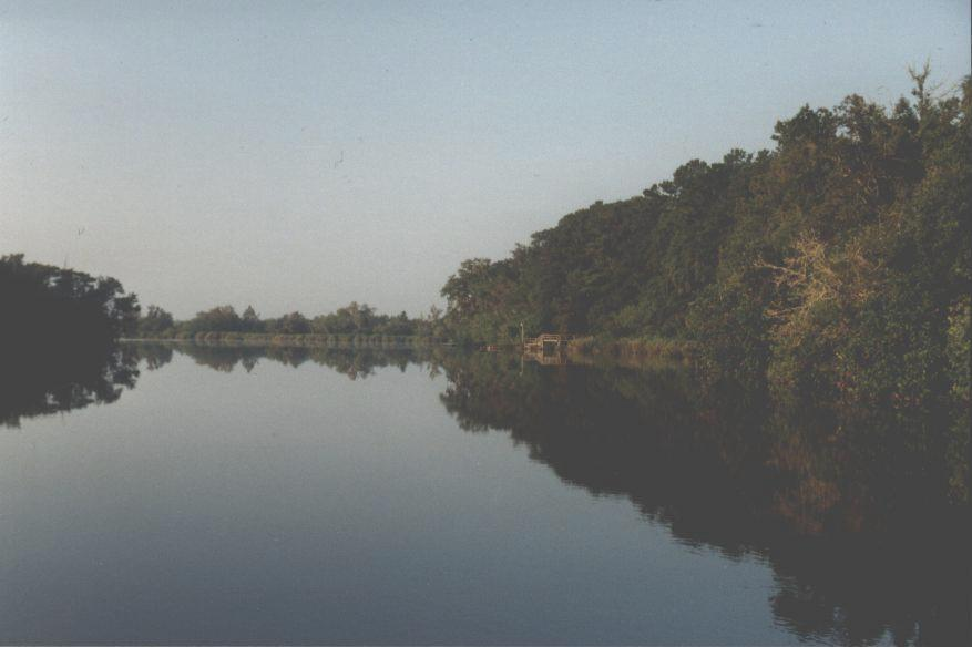 The Satilla River (7328 bytes)
